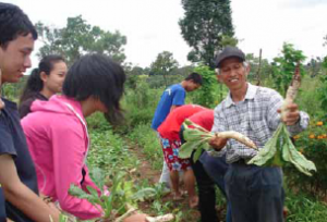 Thateng Farm's mission is to be a training ground for young people and farmers in the four Southern provinces of Laos