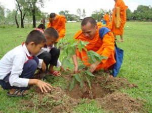 Dhamma Sanchorn monks play an important role in environmental preservation.